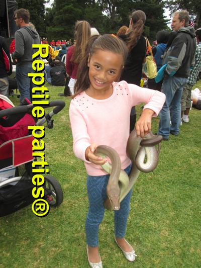 reptile show